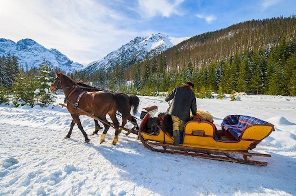 zakopane sleigh ride